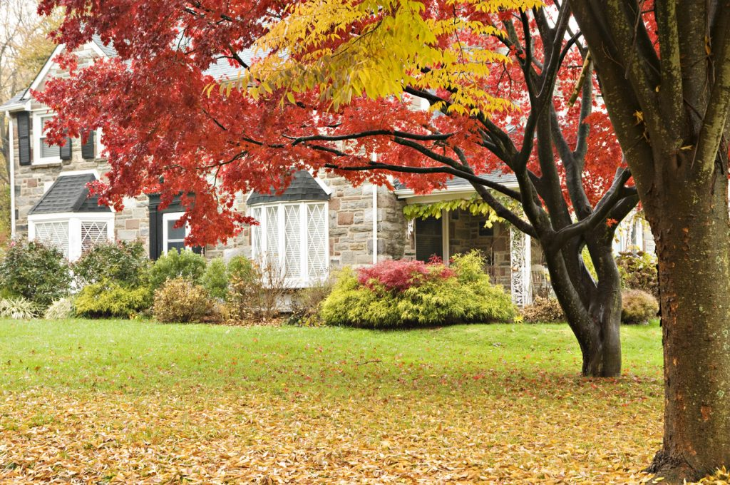 Should I Sell My Home Now or Wait Until the Spring?