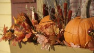 pumpkins staging