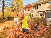 family raking