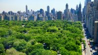 New York City skyline and Central Park