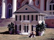 DogHouseMansion
