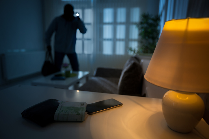 6 things professional burglars dont want you to know rismedias housecall
