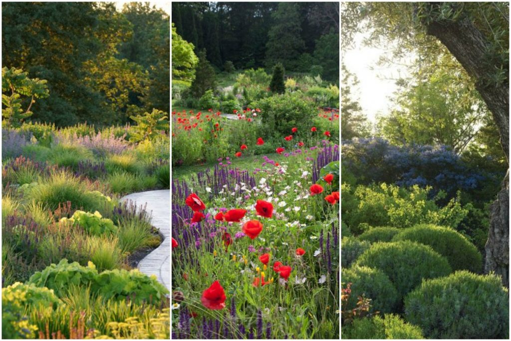 Naturalistic style Collage (1)
