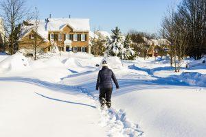 winter build