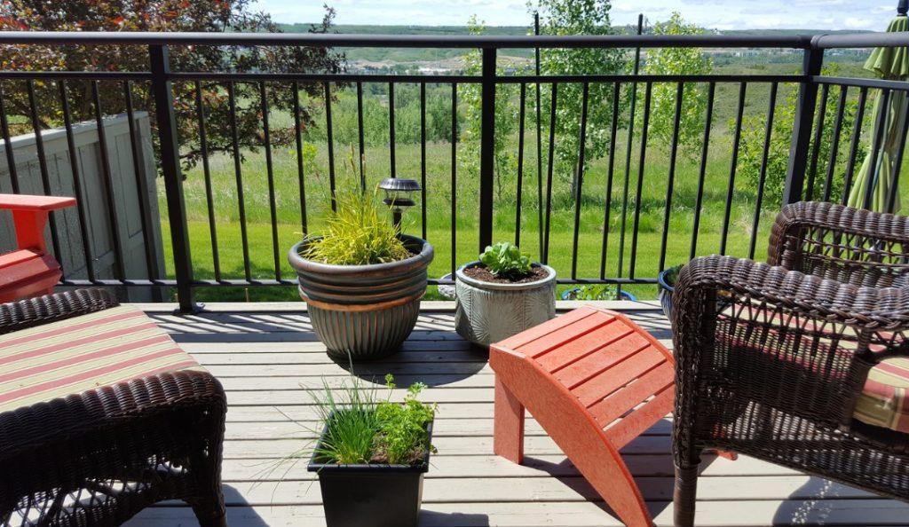 outdoor living trends