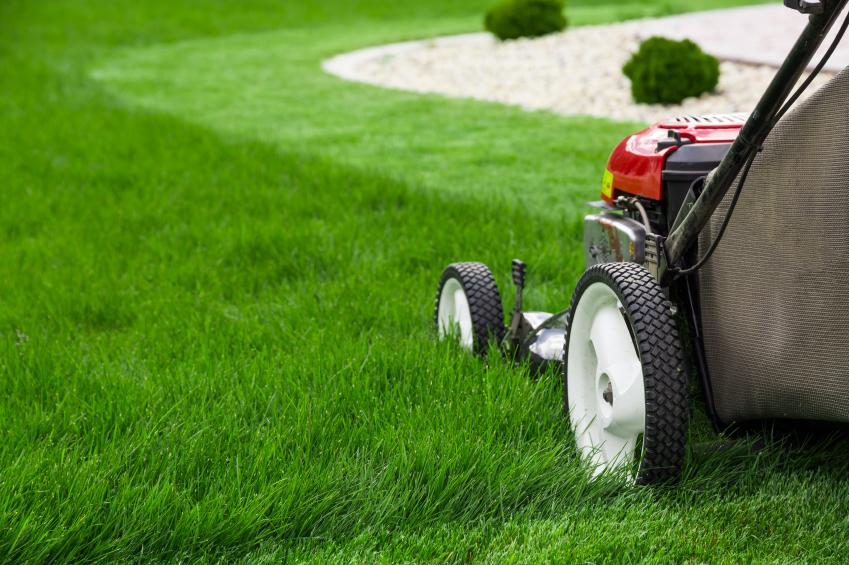 grass care